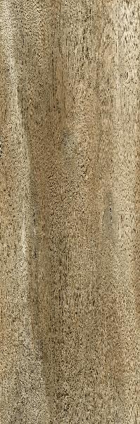 Carrelage terrasse AEQUA tur rectifié 13,8x80cm Ep.10mm