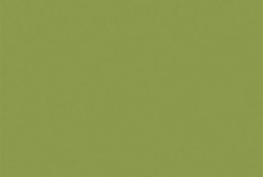 Stratifié U626 ST9 vert kiwi 0,8mm 2800x1310mm