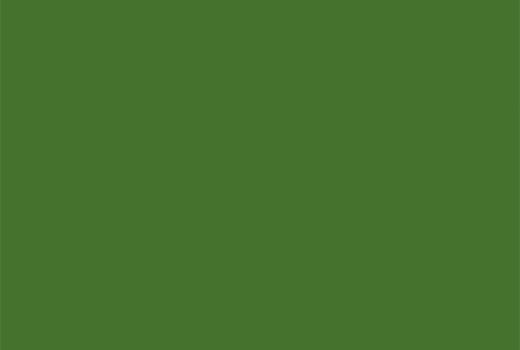 Stratifié U650 ST9 vert fougère 0,8mm 2800x1310mm