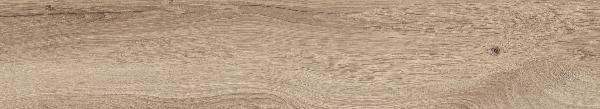 Carrelage BRICCOLA Miele 20,5x120,5cm Ep.9,5mm