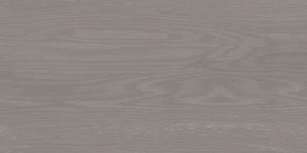 Faïence ECLAT graphite 25x50cm Ep.9,6mm