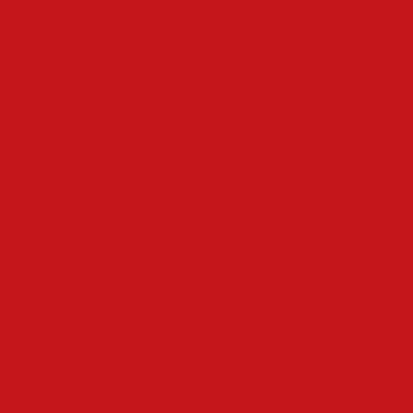 Carrelage COLOURS rouge / vermelho 300 20x20cm Ep.6mm