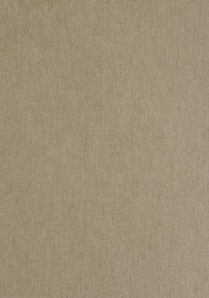 Panneau bardage fibre ciment EQUITONE TEVTIVA TE60 8x2500x1220mm