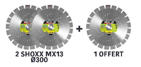 Disque diamant Ø300mm SAS SHOXX MX13/25.4 lot 3