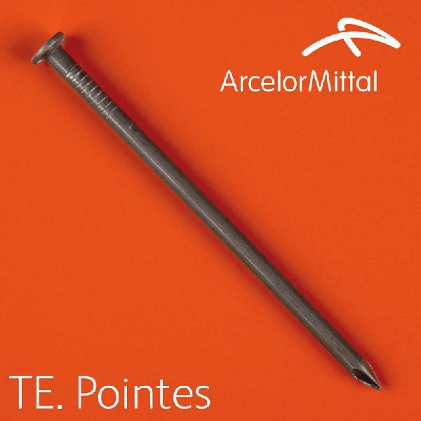 Pointes TPO françaises tête plate Ø5,5x140mm acier boite 5Kg