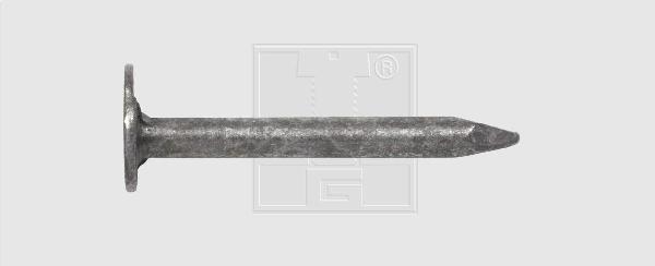 CLOU ARDOISES GALVA - 2,5 X 25 - 100 PCES