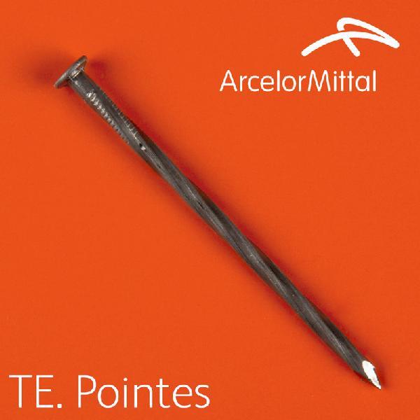 Pointes torsadées Ø3,2x80mm acier boite 5Kg