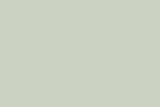 Stratifié U608 ST9 opale 0,8mm 2800x1310mm