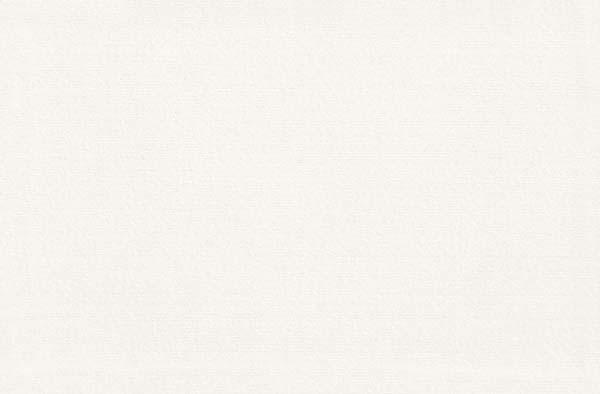 Faïence CIRCUS blanc 25x38cm