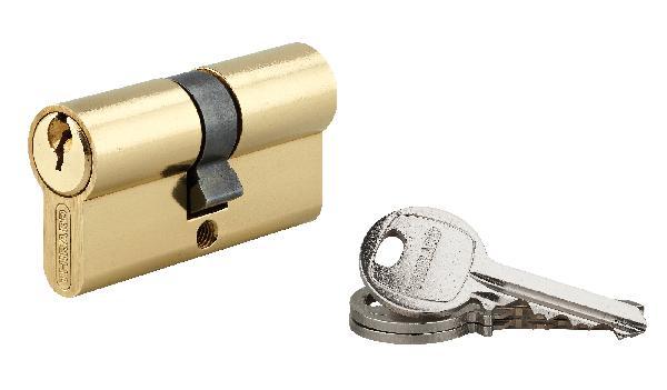 Cylindre profil européen 5 goupilles SA laiton 30 x 30 3 clés