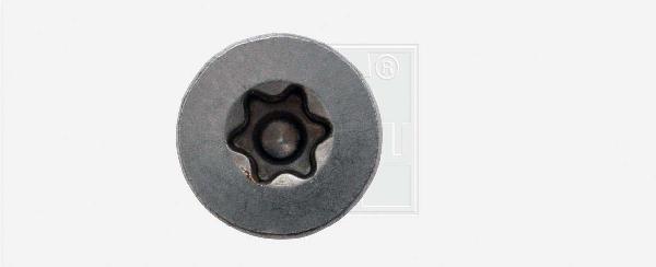 Vis FORMEL F ttap inox Ø5,0x50mm avec embout sachet 200